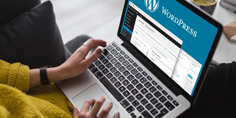Como escolher e onde encontrar temas para WordPress